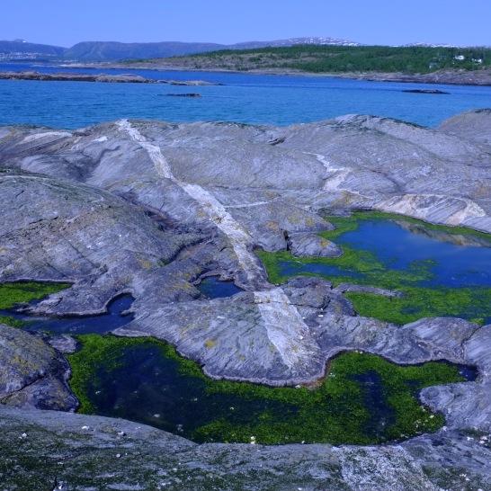 Local vista (Bodø)